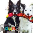 Outward-hound